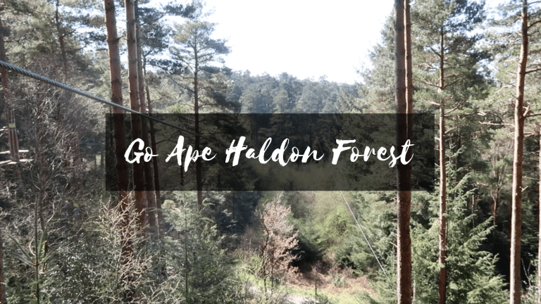 Spending Time With Nature – Go Ape Haldon Forest