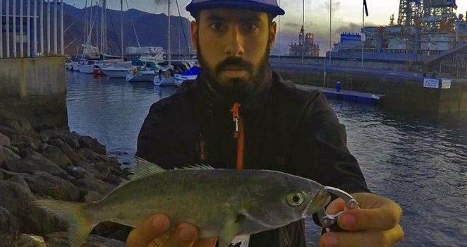 Locura ultra ligera Rock Fishing invernal!! 2018 Jurel, Pejereys, Samas, Sargos, Chicharro, Bailas.