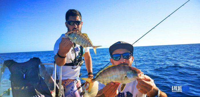 Pescar a Ultra Light Rockfishing, Microjigging y pesca Continental; en Islas Canarias.