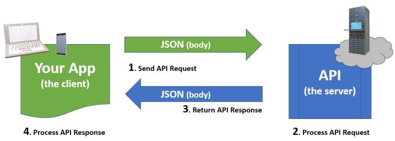 API request response cycle JSON body
