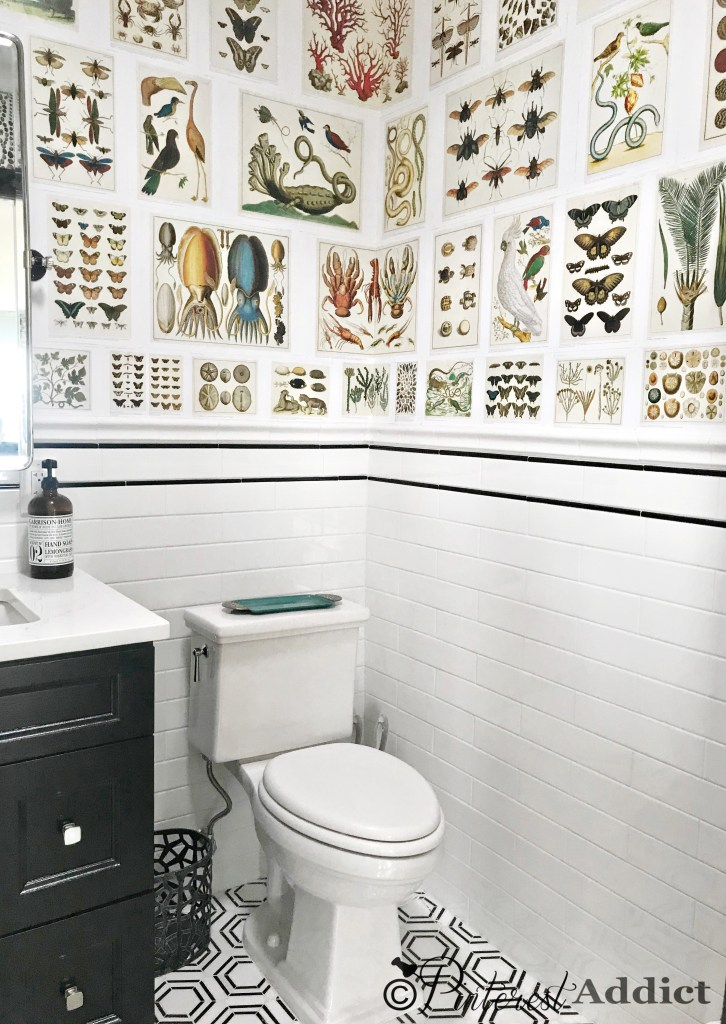Powder room marble tile floor wainscoting and Cabinet of Natural Curiosities wallpaper