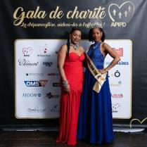 apipd-gala-2019-046