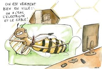 abeilles-villes-dessin-humour