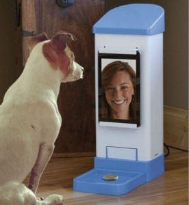 Raspberry Pi Dog Treat Pi