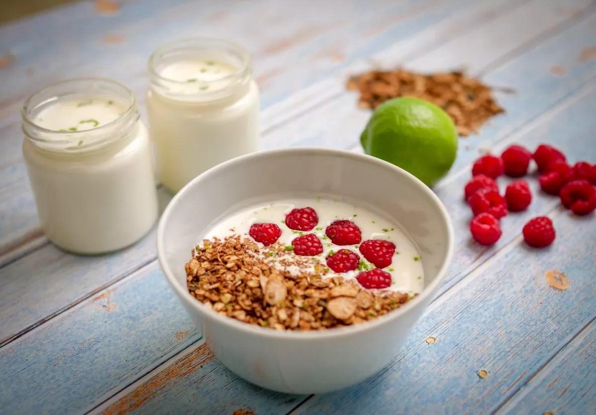 iogurtes caseiros no micro-ondas