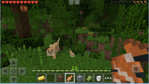 Mind Craft Pocket Edition Pro APK 4