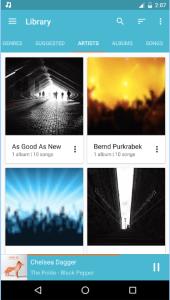 Shuttle+ Music Player Pro APK 2