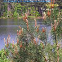 VLO N° 86 publié en Janvier 2008