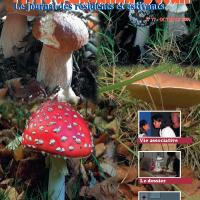 VLO N° 77 publié en Octobre 2005