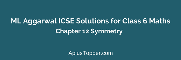 ML Aggarwal Class 6 Solutions Chapter 12 Symmetry