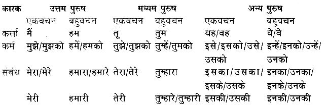 sarvanam in hindi worksheet with answers pdf