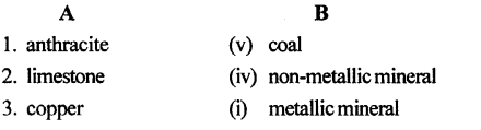 ICSE Solutions for Class 6 Geography Voyage Chapter 7 Minerals and Ores 2