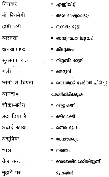Plus One Hindi Textbook Answers Unit 3 Chapter 12 दुःख 28