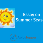 Essay On Summer Season