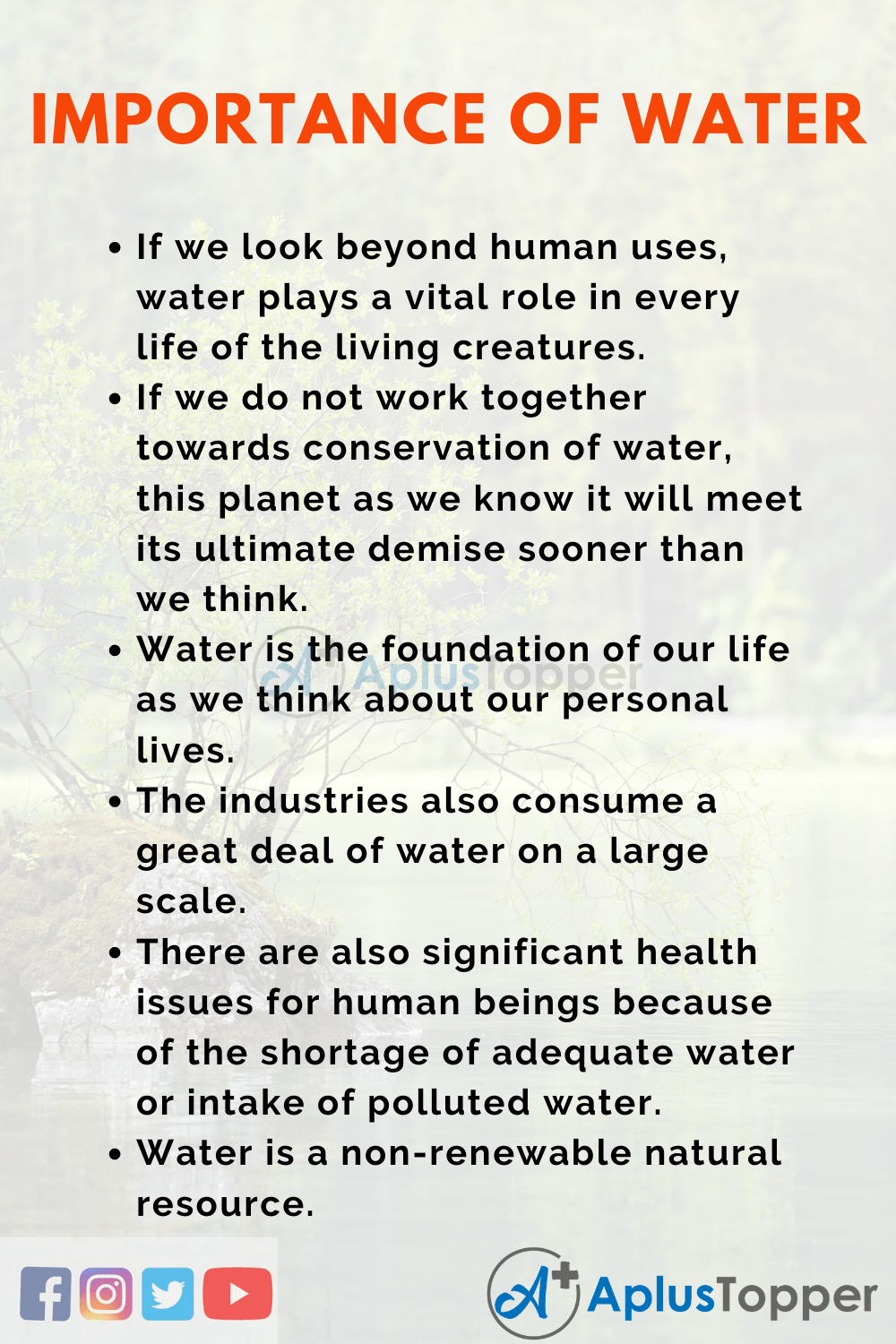 Essay about Importance of Water