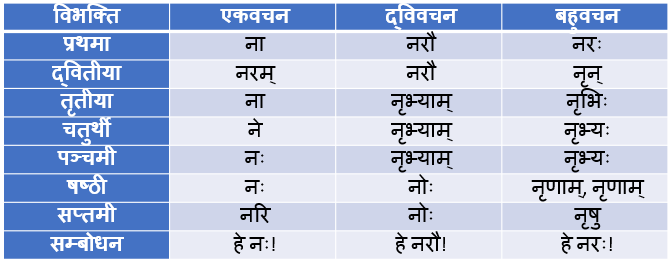 Nra Shabd Roop In Sanskrit