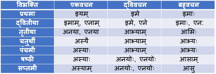 Idam Striling Shabd Roop In Sanskrit