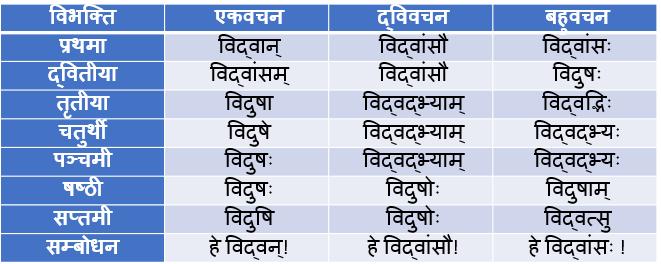Vidvas/Vidwan Shabd Roop In Sanskrit