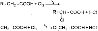 Plus Two Chemistry Chapter Wise Previous Questions Chapter 12 Aldehydes, Ketones and Carboxylic Acids 22