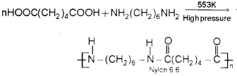 Plus Two Chemistry Chapter Wise Previous Questions Chapter 15 Polymers 1