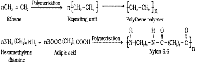 Plus Two Chemistry Chapter Wise Previous Questions Chapter 15 Polymers 2