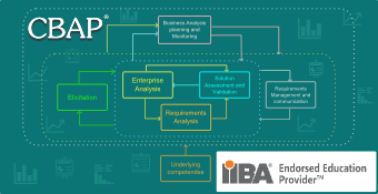 Online Training Course on Certified Business Analysis Professional (CBAP<sup>®</sup>)