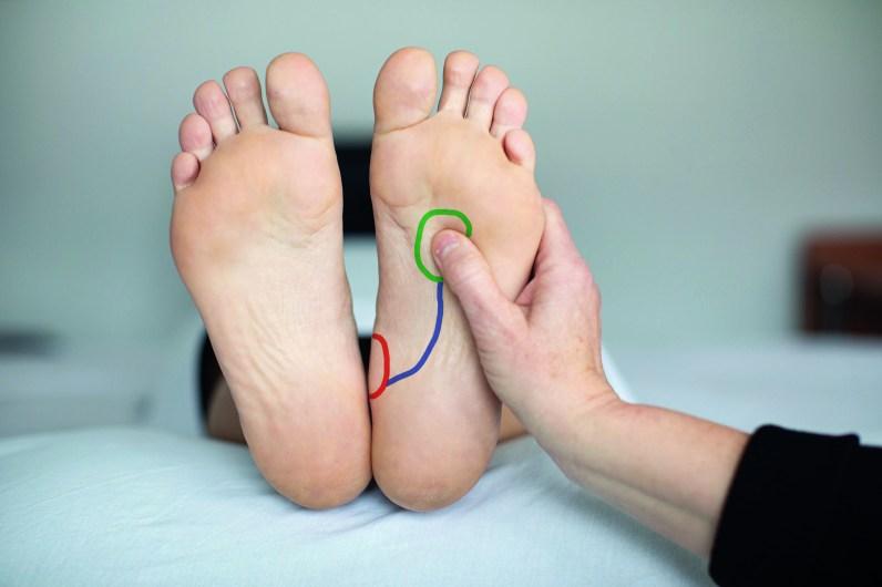 Füße einer Frau. Frau liegt. Fußreflexzonenmassage: Niere und Blase eingezeichnet