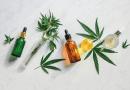 Cannabis – Das grüne Gold der Natur