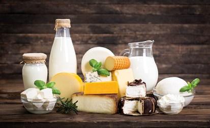 Verschiedene Milchprodukte. Energie und Vitalität. Käse, Joghurt, Milch auf Holz schön angerichtet