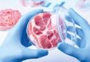 Clean Meat – das Fleisch der Zukunft
