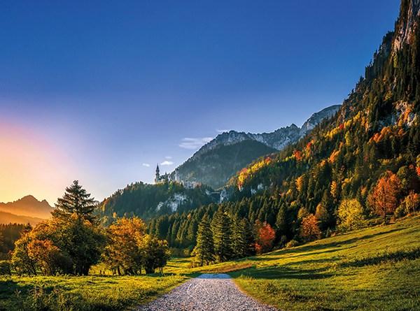 Waldweg im Herbst. Berge, Alpen, Landschaft. Wandern im Herbst. Wandern gegen Venenprobleme
