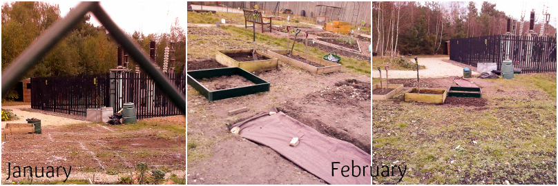 Allotment_Jan_Feb