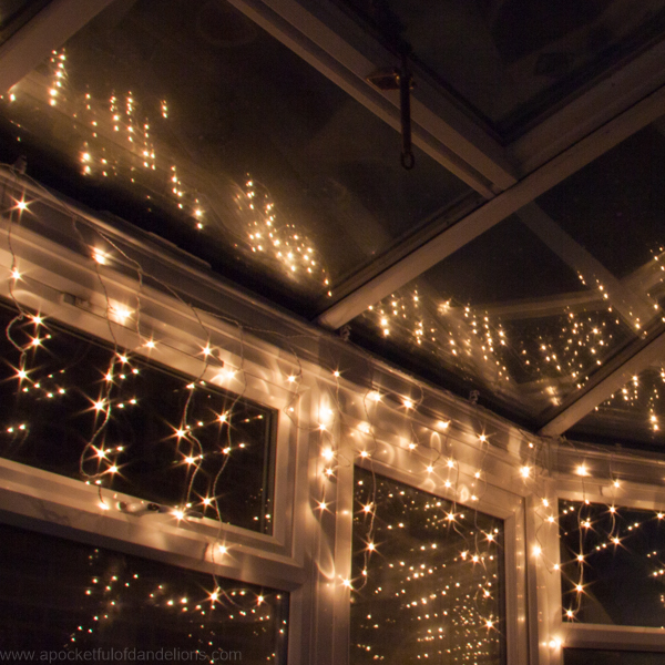 Conservatory_Lights
