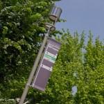 apogeo segnaletica reggio emilia campus san lazzaro-3