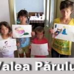 Valea Parului – Un nou asezamant pentru copiii si mamele defavorizate, dupa modelul Valea Plopului