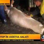 VIDEO: Inundații catastrofale la Galați. Veste REA din partea meteorologilor, pentru Moldova