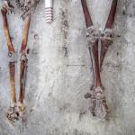 Arheologii au finalizat raportul asupra gropii comune de la Periprava
