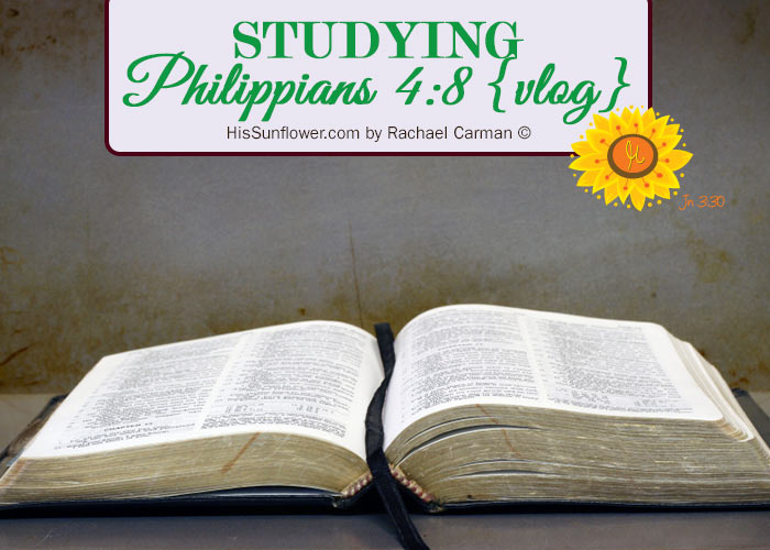 Studying Philippians 4:8 {vlog} at HisSunflower.com by Rachael Carman