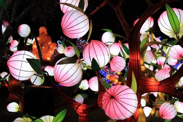 festival des lanternes gaillac peches