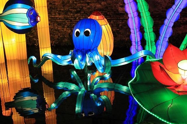 festival des lanternes gaillac pieuvre