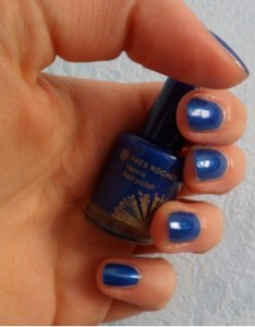 vernis-yves-rocher-bleu.JPG