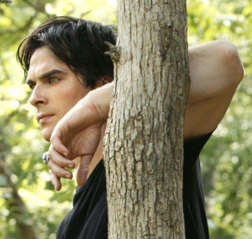 Damon-Salvatore-tvd.jpg