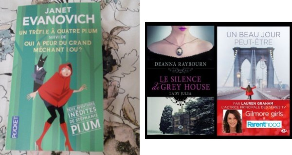 livres-chick-lit.JPG