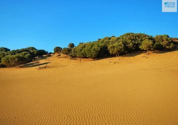 Η Ελλάδα έχει τη δική της έρημο!