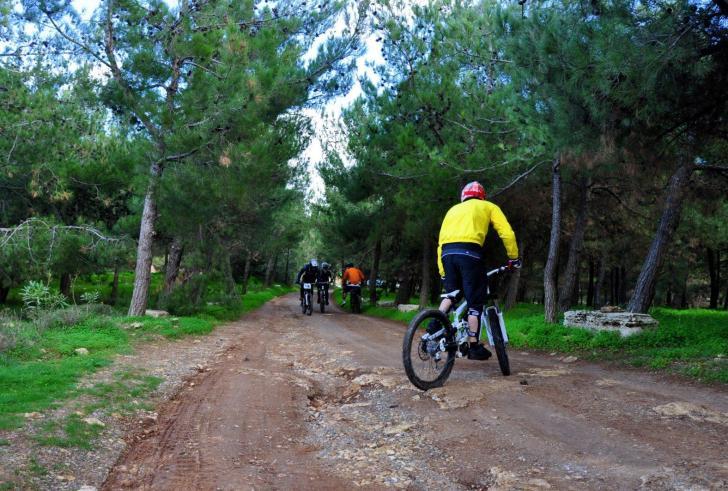 Εκπληκτική διαδρομή με θέα για ποδηλάτες στο τεχνητό δάσος της Κρήτης!