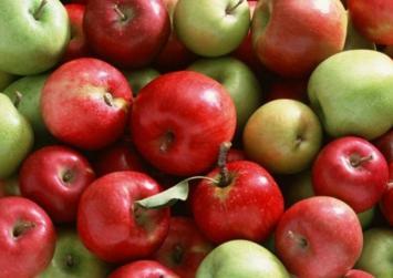Η 4η γιορτή μήλου στον Κρουσώνα