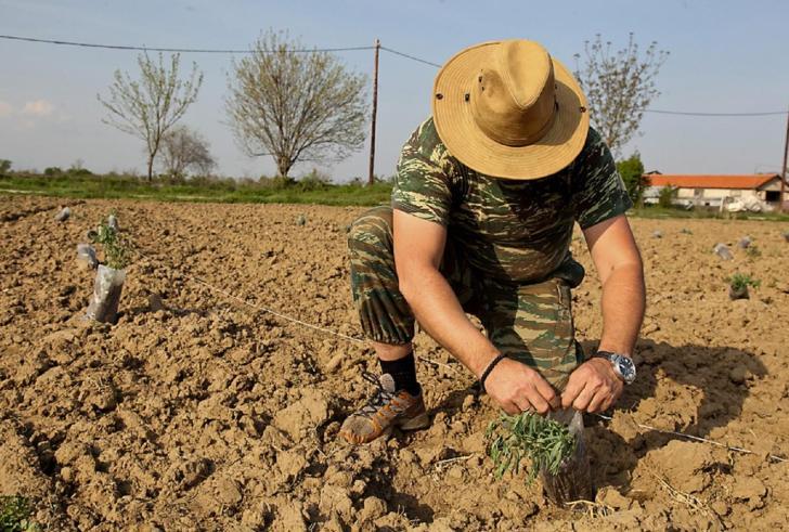 Αδιαφορούν για τους αγρότες της Κρήτης