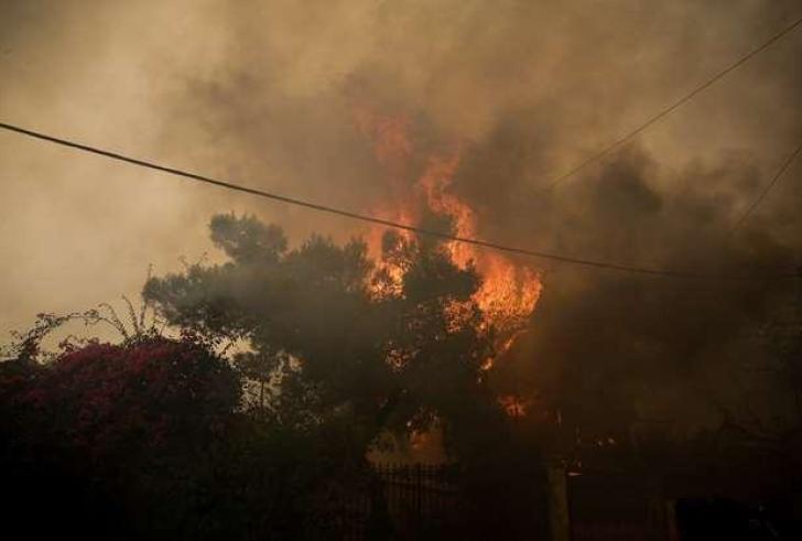 Υψηλός κίνδυνος πυρκαγιάς αύριο στον Νομό Λασιθίου