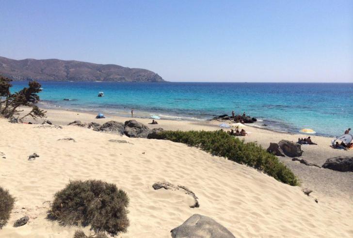 Μαγευτική παραλία της Κρήτης με τιρκουάζ νερά, κέδροι και λευκή άμμος (φωτο)