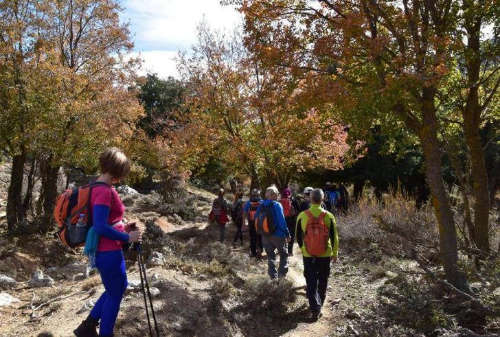 Ενδιαφέρουσα πεζοπορία την Κυριακή από τον Ορειβατικό Σύλλογο Μοιρών